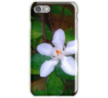 Because... White Plumeria iPhone Case/Skin