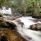 Liffey Falls by Alex Wise