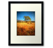 The Tree by the Side of the Road Framed Print