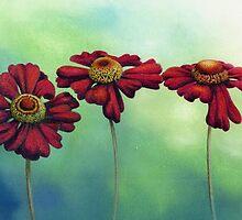 Three Red Helenium Flowers by Helen Lush
