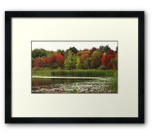 Fall in Michigan Framed Print