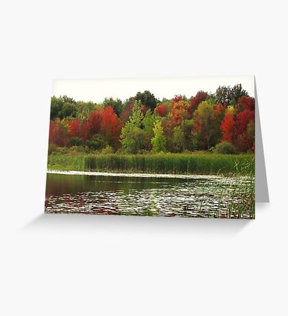 Fall in Michigan Greeting Card