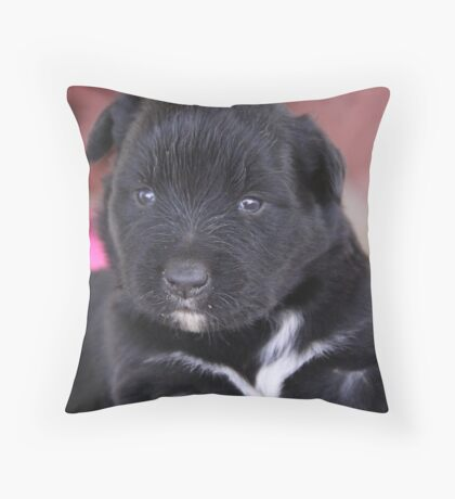 I'm 4 weeks old Throw Pillow