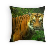 Baheem Throw Pillow