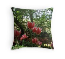 Introducing Leura Gardens ~bd14 Throw Pillow