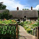 annhaffaway cottage by cynthiab