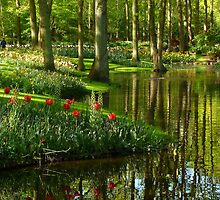 Keukenhof by Paraplu Photography