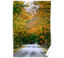 Country Road Fall Vermont Poster