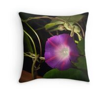Mourning Glory Throw Pillow