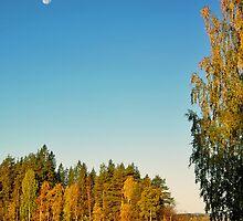 Autumn Light by MarianaEwa