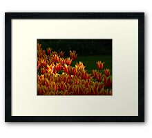 On Fire! Framed Print