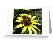 Smothered in pollen Greeting Card