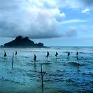 Stilt Fishing - Midigama by Anuja Manchanayake