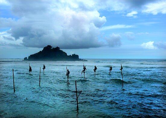 Stilt Fishing - Midigama by Anuja Manchanayake