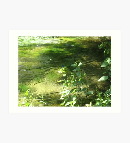 GREEN DREAMS ON THE RIVER Art Print