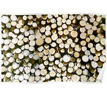 Wood Pile Poster