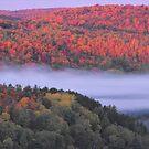 Fall Over Bancroft Ontario by Tracy Wazny