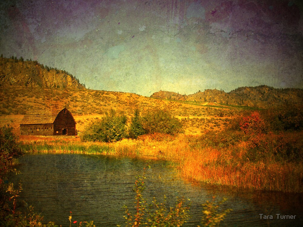 The Barn by the Water by Tara  Turner