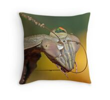 """ Can You Hear Me Now ? "" Throw Pillow"