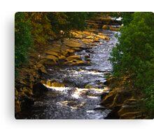 River Swale at Keld Canvas Print