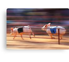 Pig Racing Canvas Print