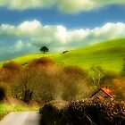The Beauty Of Dorset by Nigel Finn