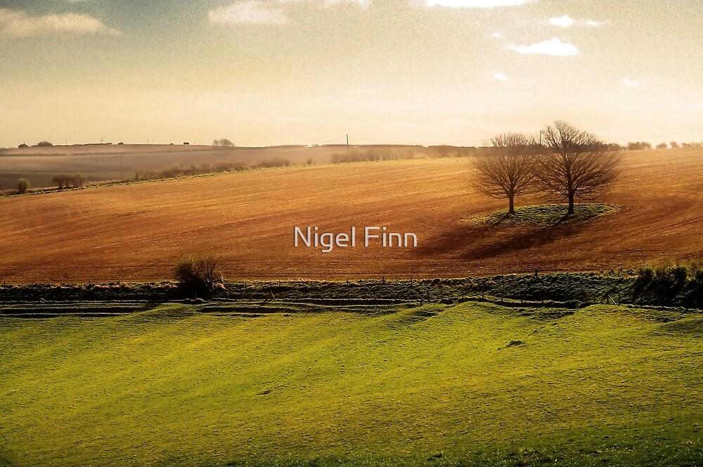 Best Friends by Nigel Finn