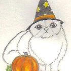 Wizard cat by harriet7