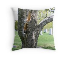 Damage from Pileated Woodpeckers Throw Pillow