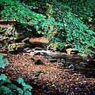 Gleno Falls (5) by SNAPPYDAVE