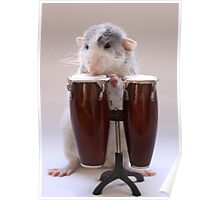 The percussionist :) Poster