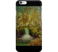 """""""Honey Hole"""" (2014)  iPhone Case/Skin"""