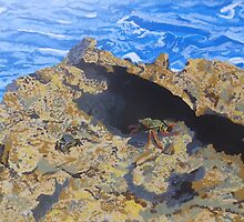 Curacao Crabs by Margaret Brooks