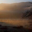 Mist at sunrise by citrineblue