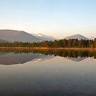 Stillness on  Loch Morlich by citrineblue