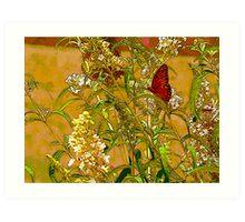 """Butterfly On the Butterfly Bush"" Art Print"