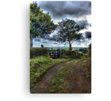 Farm track, near Tedburn St Mary, Devon Canvas Print