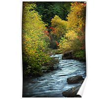 American Fork River - Curves Poster