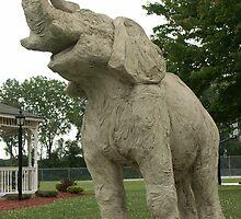 Elephant by Bob Hardy
