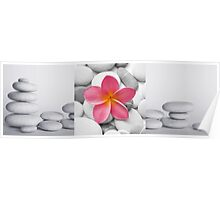 Pebble and Flower Tryptich Poster