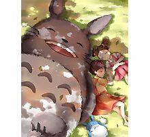 My Amazing Totoro ! Photographic Print
