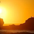 Oceans Ablaze by Jenny Miller