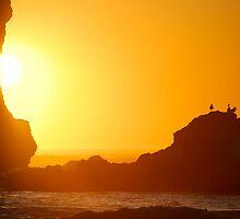 Oceans Ablaze by Jenny Ryan
