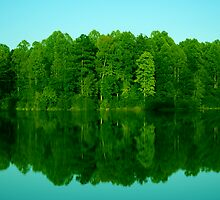 Le miroir du foret by Tim Scullion