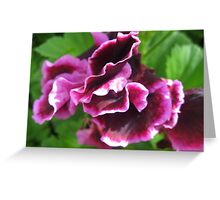 Luscious Pink Floral Abstarct Greeting Card