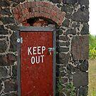 door......You heard me, keep out! by Lynne Prestebak