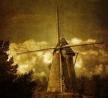 Windmill by Nathalie Chaput