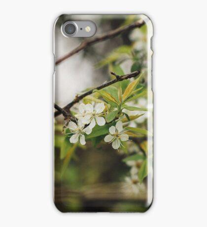 Spring Green iPhone Case/Skin