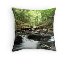 Flowing water and rocks Throw Pillow