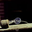 Lightbulb by Lindsey Van Nuil
